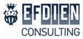 logo_efdien_consulting